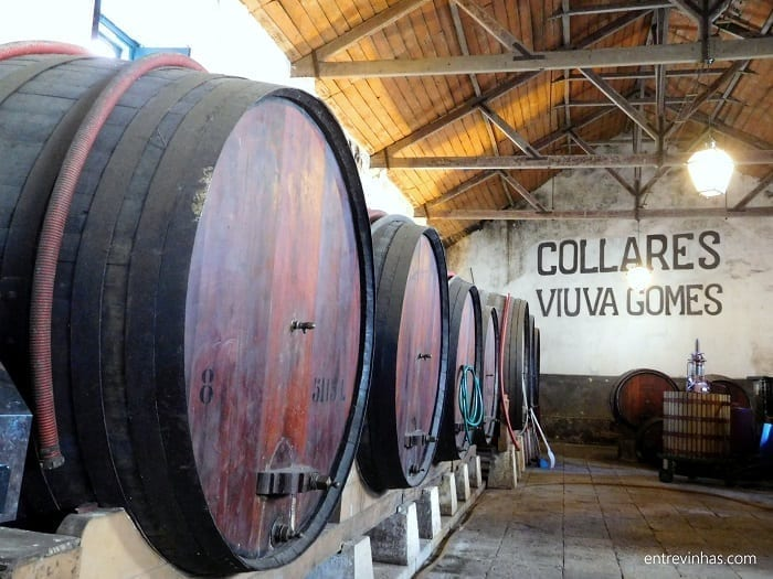 vinhos-de-colares-viuva-gomes