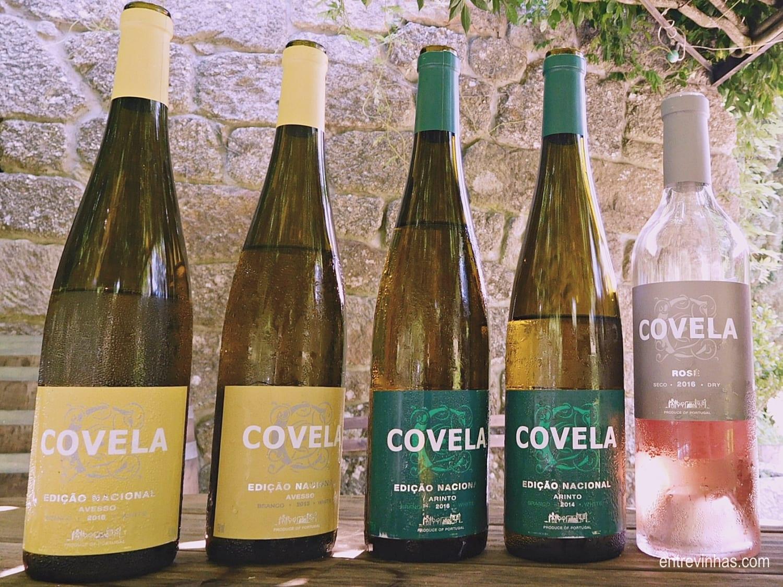 Enoturismo Portugal de Norte a Sul entre vinhos e queijos