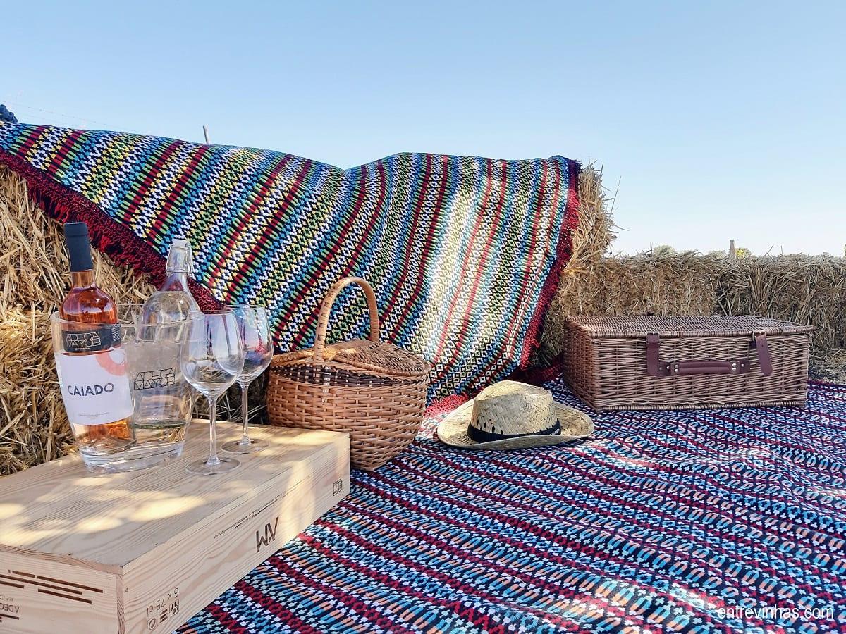 picnic na vinha