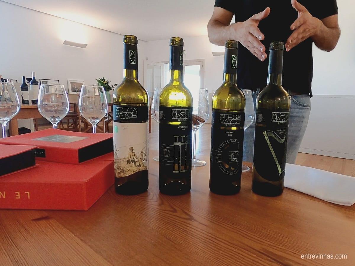 vinhos brancos alentejo