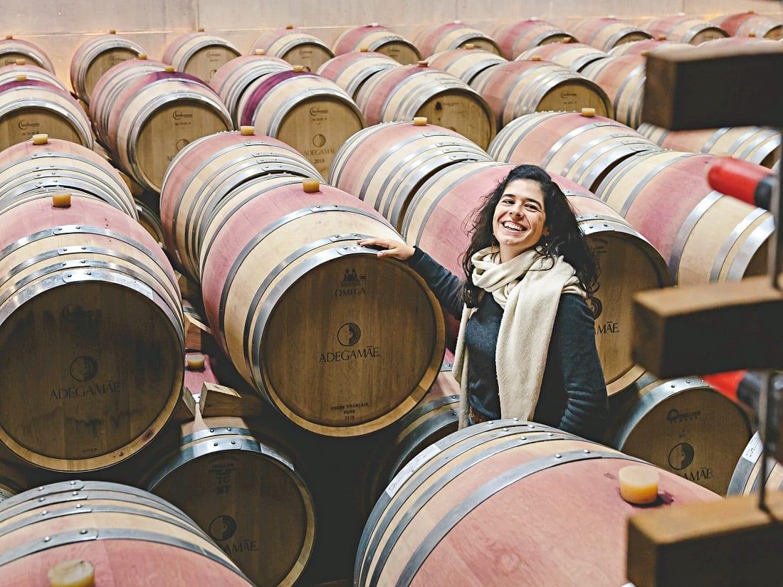 adega mãe entre vinhas