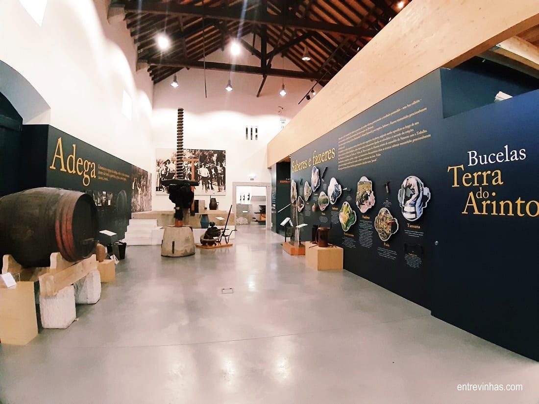 museu do vinho de bucelas