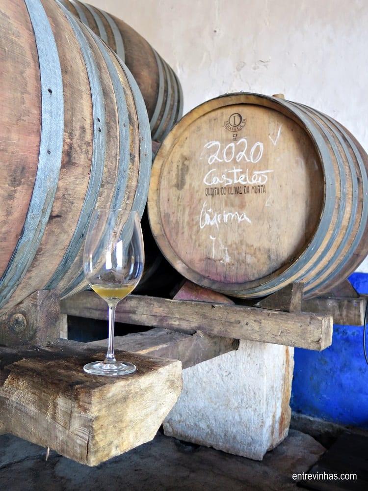 vinhos serra oca