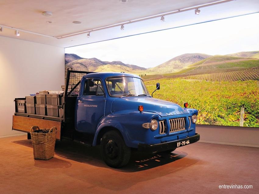 wine experience museu