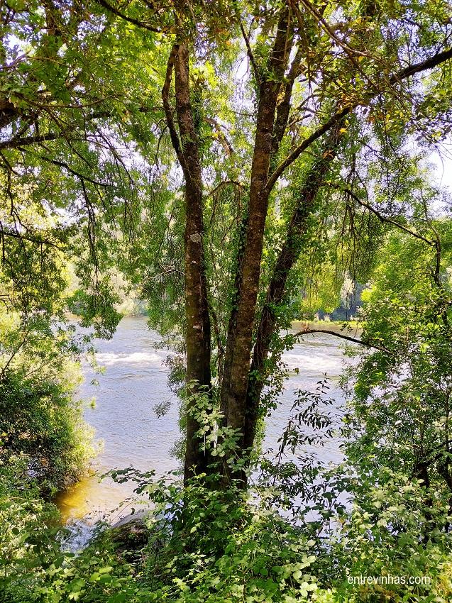 rio lima vinho verde